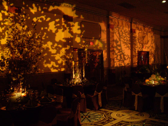 and decorative lighting for this enchanted forest wedding event